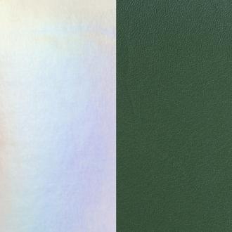 Cuir Les Georgettes Large Irisé argent/Vert