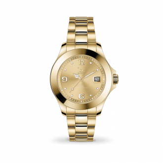 Montre ICE-WATCH ICE Steel light Gold Small 017319